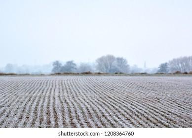 Campo de tierra cubierto de escarcha al comienzo del invierno