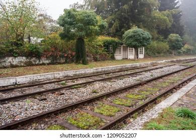 その美しい美しい色で秋の小さな都市の鉄道に沿って霧のかかった朝に