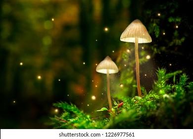 Lámparas de setas brillantes con luciérnagas en bosque mágico