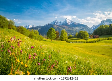 Schöne Ansicht der idyllischen alpinen Berglandschaft mit blühenden Wiesen und schneebedeckten Berggipfeln an einem schönen sonnigen Tag mit blauem Himmel im Frühling
