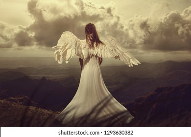 Back view of woman with wings. angel