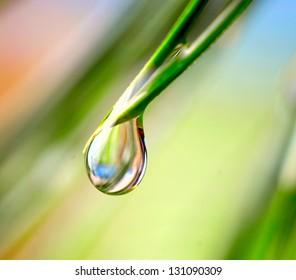 Fondo de naturaleza de mañana con hermosa gota
