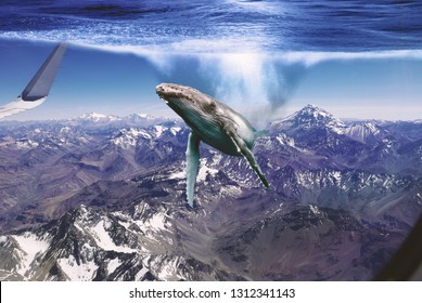 Photo manipulation, flying whale over Andes