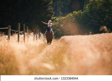 若い女の子は、日没の夏の夜に、穀物畑を過ぎて夏のドレスを着て、彼女の馬に乗ります。
