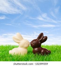 新鮮な牧草地でキスする黒と白のチョコレートバニー。