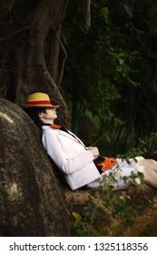 Cosplay des Jungenmädchens mit dem Strohhutschlaf im tropischen Wald