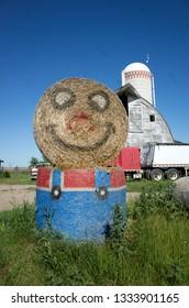 Farmer's Minion duikt op voor zijn schuur. Clitherall Minnesota MN USA