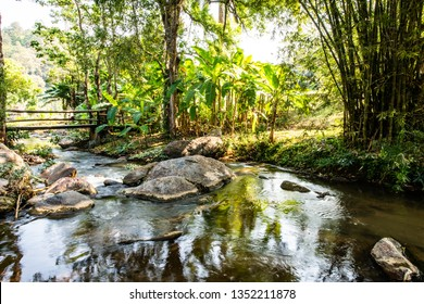 Gebirgsbach in der Provinz Chiangmai, Thailand.