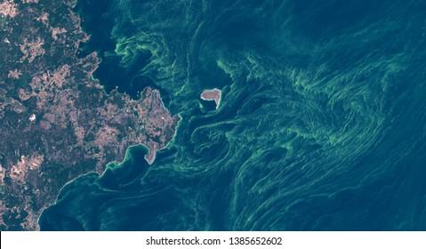High resolution satellite image of algae bloom around Gotland, Sweden, 2018