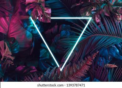 Kreatives fluoreszierendes Farblayout aus tropischen Blättern. Flach liegende Neonfarben. Naturkonzept.