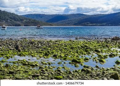 Schöne Aussicht auf felsigen Strand, blaues Meer und Berge in Pirates Bay nahe Fossil Island in Tasmanien, Australien.