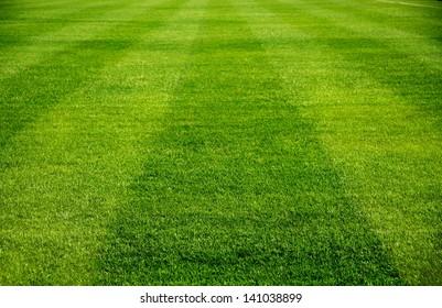 サッカースポーツ、サッカー場、サッカー場、チームスポーツの質感のための新鮮な緑の草の美しいパターン