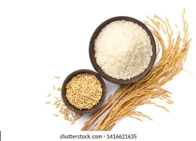 Vista superior de arroz blanco y arroz con cáscara en un tazón de madera con espiga de arroz aislado sobre fondo blanco.
