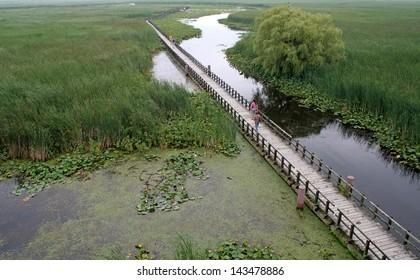 Die Promenade im Sumpf am Point Pelee National Park in Ontario, Kanada.