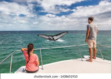 ホエールウォッチングボートツアー観光客は、熱帯の目的地で夏の休暇を過ごすザトウクジラの尾海を見て船に乗っています。カタマランのデッキをカップルします。