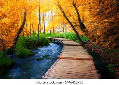 プリトヴィツェ湖群国立公園、ユネスコの自然世界遺産、クロアチアの有名な旅行先で、湖と滝の風景を楽しめる自然トレッキングのための美しい木製の小道。
