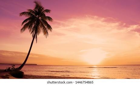 Orange Tagesanbruch Palmen Küste. Natürliche Palmenstrandwolkenlandschaft über dem Indischen Ozean. Palmeninsel gern. Rote Tagesanbruchpostkarte. Idyllische Entspannung im Freien Urlaub. Tagesanbruch der Palmeninselsonne.