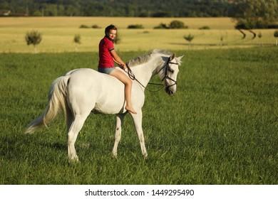 若い女の子は午後遅く、日没時間に牧草地でサドルなしで白い馬に乗る