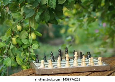 背景にリンゴの木の枝と木製の机の上のチェスの駒とチェス盤。白い部分に選択的に焦点を当てます。野外活動。