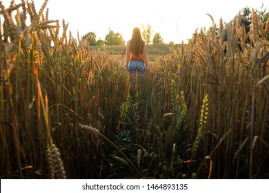 Leading lines and trail in the cereal field. Charming portrait of a red-haired girl from the back. Epic and mystic composition like in anime cartoon. Latvian countryside Latvian farmlands. Lucid dream