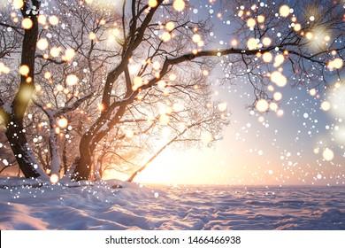 Fondo de Navidad. Copos de nieve brillantes mágicos en el paisaje de la naturaleza de invierno. Escena de invierno hermosa con bokeh. Cuento de hadas de invierno. Árbol de brillo de luces iluminadas