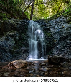 Chłodne i zacienione Upper Falls w parku hrabstwa Uvas Canyon w Kalifornii