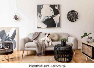 Interior de salón elegante y escandinavo de apartamento moderno con sofá gris, inodoro de madera de diseño, mesa negra, lámpara, pinturas abstractas en la pared. Hermoso perro acostado en el sofá. Decoración del hogar.