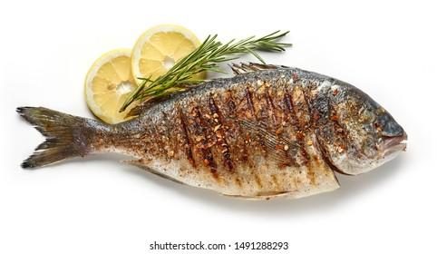 gegrillter würziger Fisch lokalisiert auf weißem Hintergrund, Draufsicht