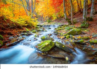 Erstaunliche Herbstlandschaft - Flusswasserfall im bunten Herbstwaldpark mit gelbroten Blättern, große Auflösungen