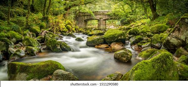 River Plym unterhalb der Shaugh Bridge