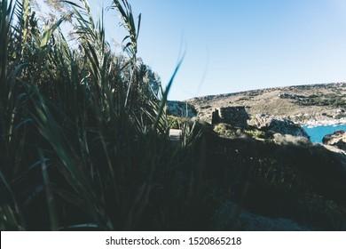 Nature landscape of Maltase island