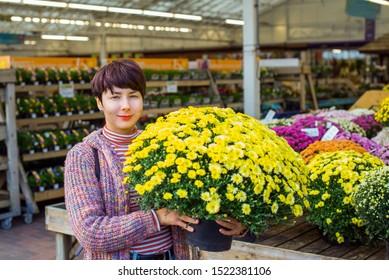 Junge Frau, die vergossene gelbe Chrysanthemengänseblümchenblumen am Garteneinkaufszentrum hält. Herbstideen der Außendekoration. Zeit für Hobby und Freizeit. Selektiver Fokus, Kopierraum