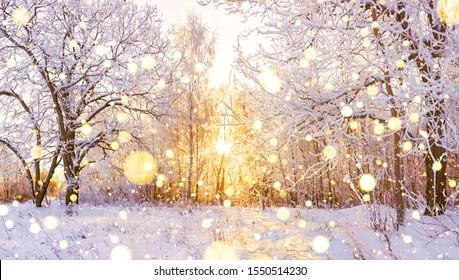 schönes schneebedecktes Winterlandschaftspanorama mit Wald und Sonne. Wintersonnenuntergang im Waldpanoramablick. Sonne scheint durch schneebedeckte Bäume