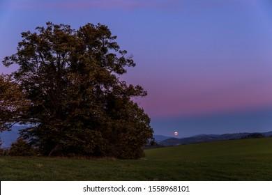 Salida de la luna árbol abandonado en una colina al atardecer oscuro con la luna creciente en luna llena sobre el horizonte entre la naturaleza y el paisaje con vistas a la captura de nubes oscuras y cambiantes en alta resolución.