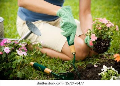 beschnittenes Bild der Gartenarbeit der Frau