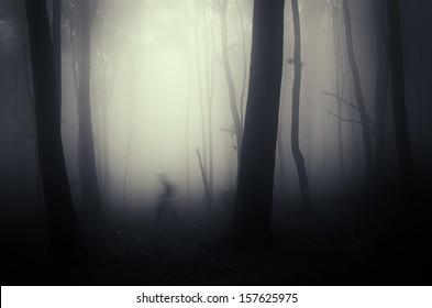 spooky shadow crawling through trees in a dark misty forest