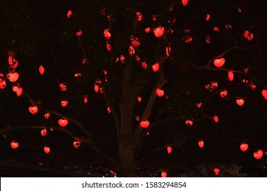 St Valentine's Day romantic red hearts lights hanging in a tree during the night, in Vienna park. Outdoor love concept natural setting background. Many red hearts against dark black night time