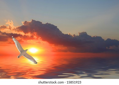 Fly over sunset water reflection