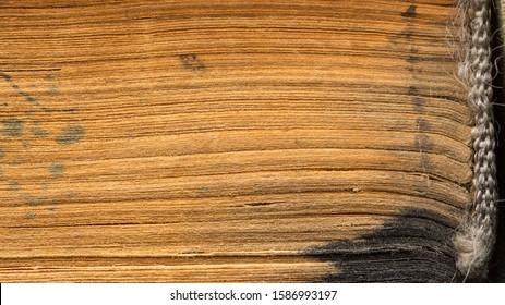La textura macro de las páginas de un libro antiguo. Captal de la tela. Vista lateral de primer plano. Diseño de texto, frases, inscripciones.