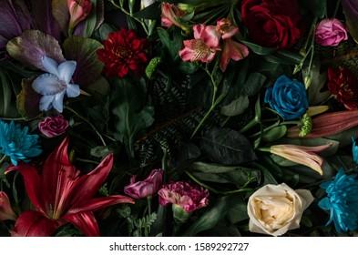 Kreatives Layout aus Blumen und Blättern. Flach liegen. Naturkonzept. Blumengrußkarte. Bunter Frühlingsblumenhintergrund, Raum für Text. Natur Trendy dekoratives Design.