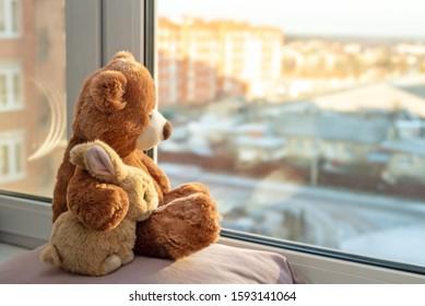 Mejores amigos oso de peluche y juguete de conejito sentado en el alféizar de la ventana abrazándose y mirando por las ventanas, luz del sol, día soleado. Vista lateral. Concepto de amor, familia y amistad. quédate en casa, a salvo.