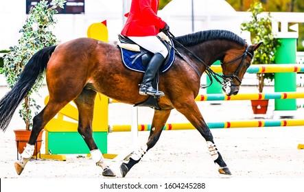 Sauerampfer Dressurpferd und Reiter in Uniform durchführen Sprung beim Springwettbewerb. Pferdesport Hintergrund. Kastanienpferdeporträt während des Dressurwettbewerbs.