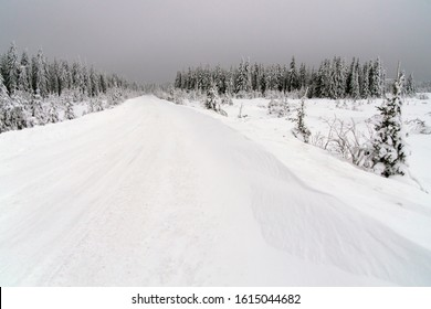 Winter road in Siberian forests