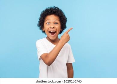 うわー見て、ここに宣伝してください!背景の空の場所を指している巻き毛の驚いたかわいい男の子の肖像画、プロモーション広告のコピースペースを示している驚いた未就学児。屋内スタジオショット