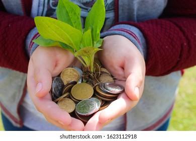La naturaleza se mezcla con el captalismo. Árboles convirtiéndose en dinero