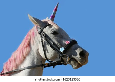 Magic background with realistic white colored unicorn horse