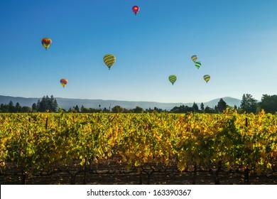 Globos de aire caliente sobre un viñedo en Napa Valley, California, EE.