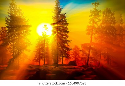 Sunrise in forest. Forest sunrise view. Sunrise forest trees landscape. Sunrise in winter forest