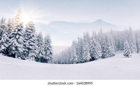 Panorama der nebligen Winterlandschaft in den Bergen