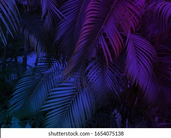 tropical leaf summer background with blue and purple party glow colors, exotic jungle palm tree leaves toned